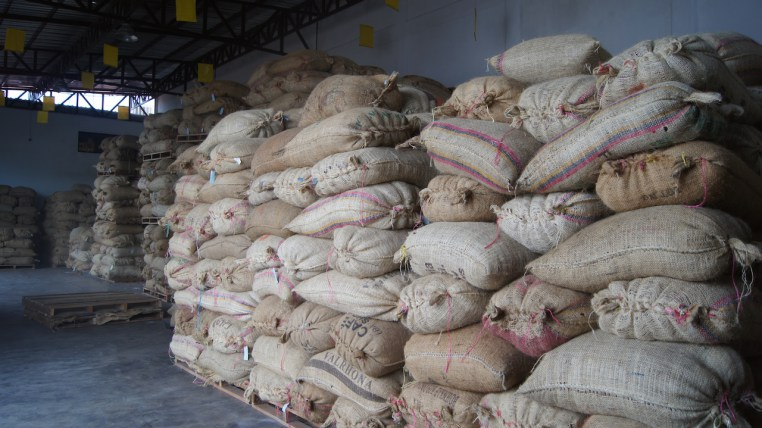 Cocoa bags ready to transport