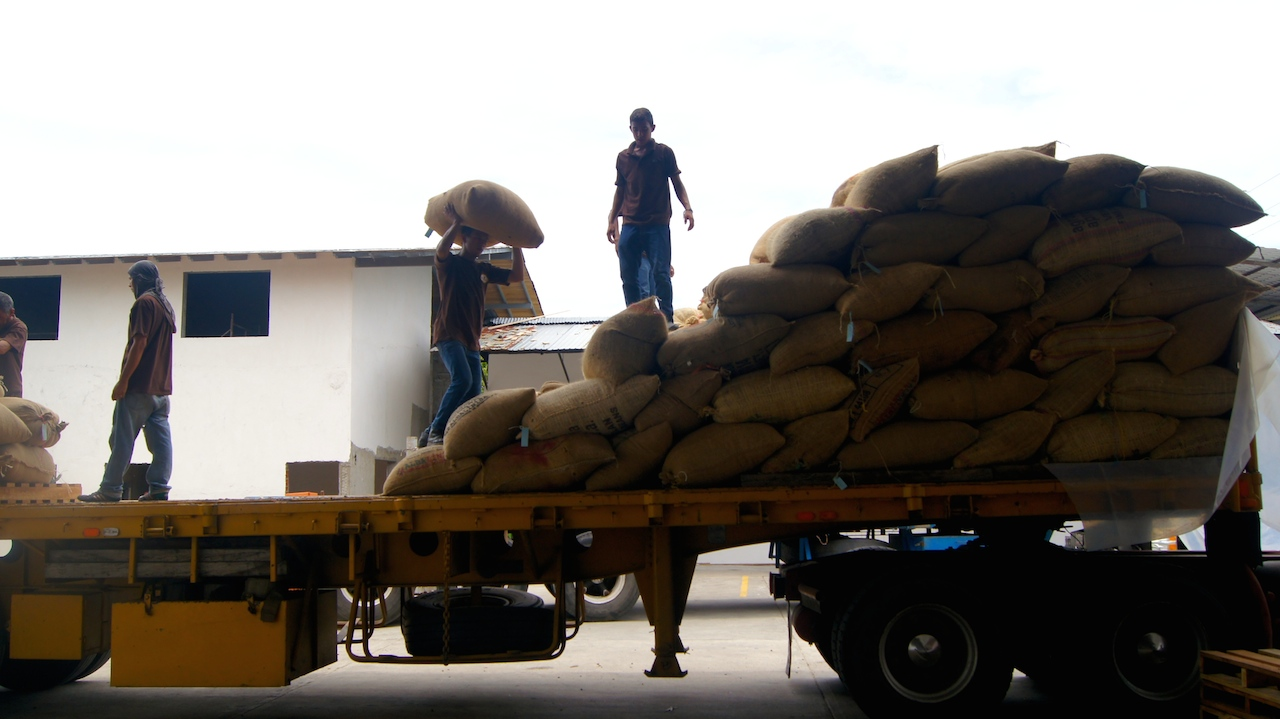El equipo de Chococao transportando cacao