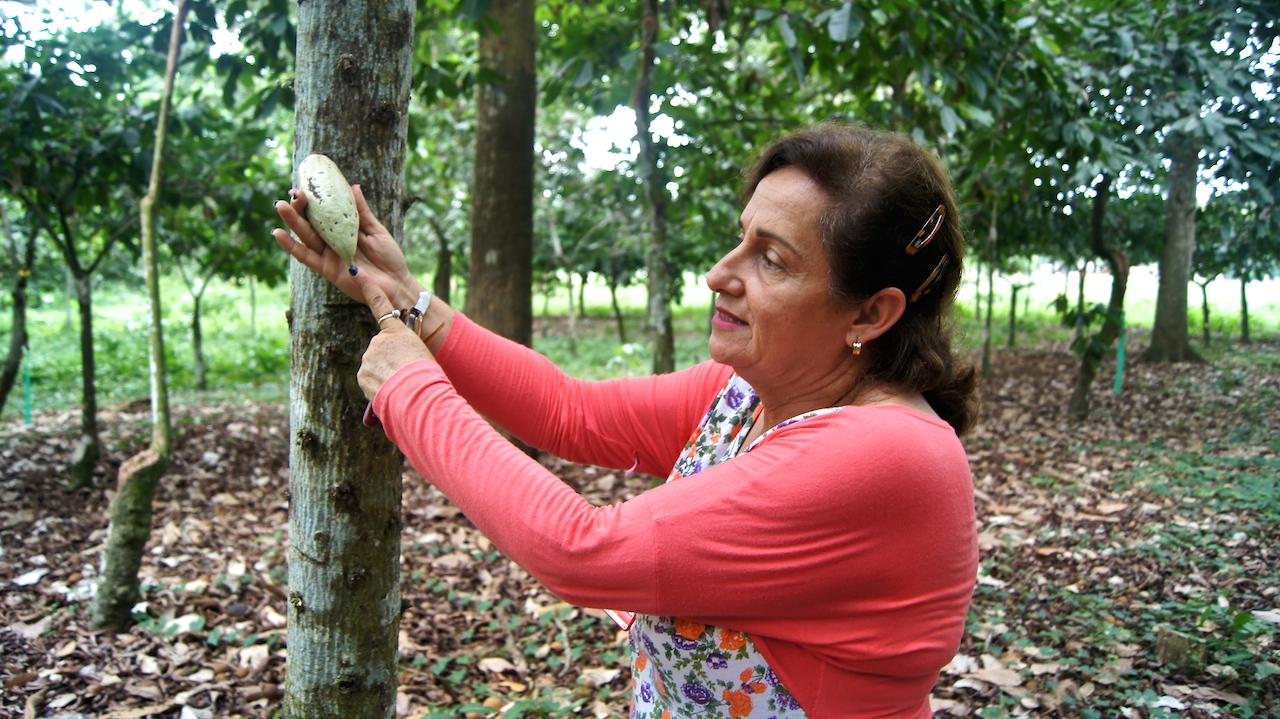 Iraima Chacón, ingeniero de Corpozulia, encargada de velar por el bienestar banco de Germoplasma